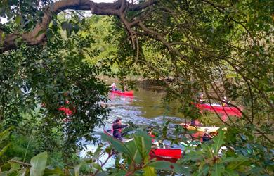 Paseo en Kayak, en Canoa Canadiense o en Trainera por el río