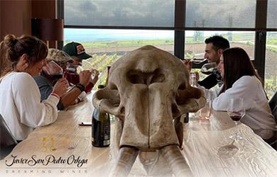 Visita guiada a la bodega + cata de 3 vinos + picoteo