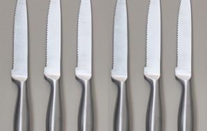 Set de 6 cuchillos profesionales de carne