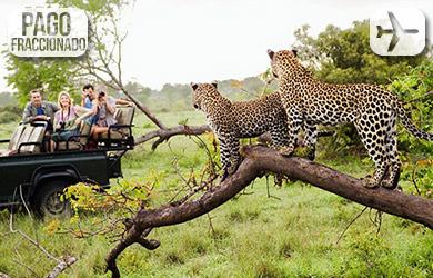Viaje de 9 días a Sudáfrica
